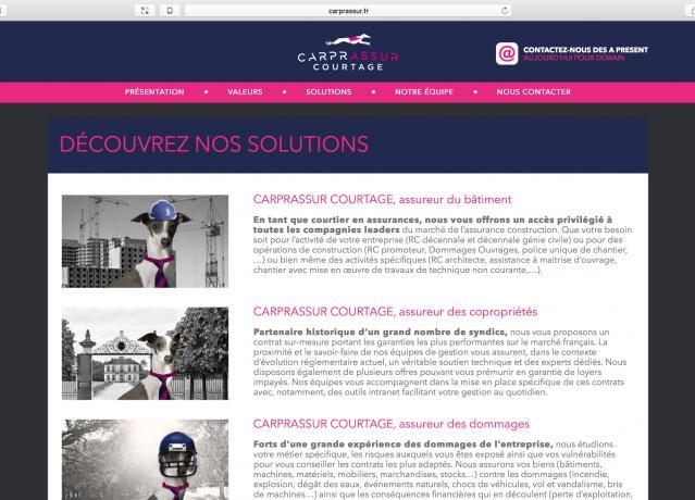 CARPRASSUR_capture02.png